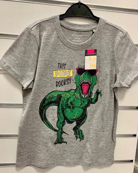 Īsroku krekls 5-6 gadi/116cm/Pelēks ar zaļu dinozauru-This Dude Rocks!